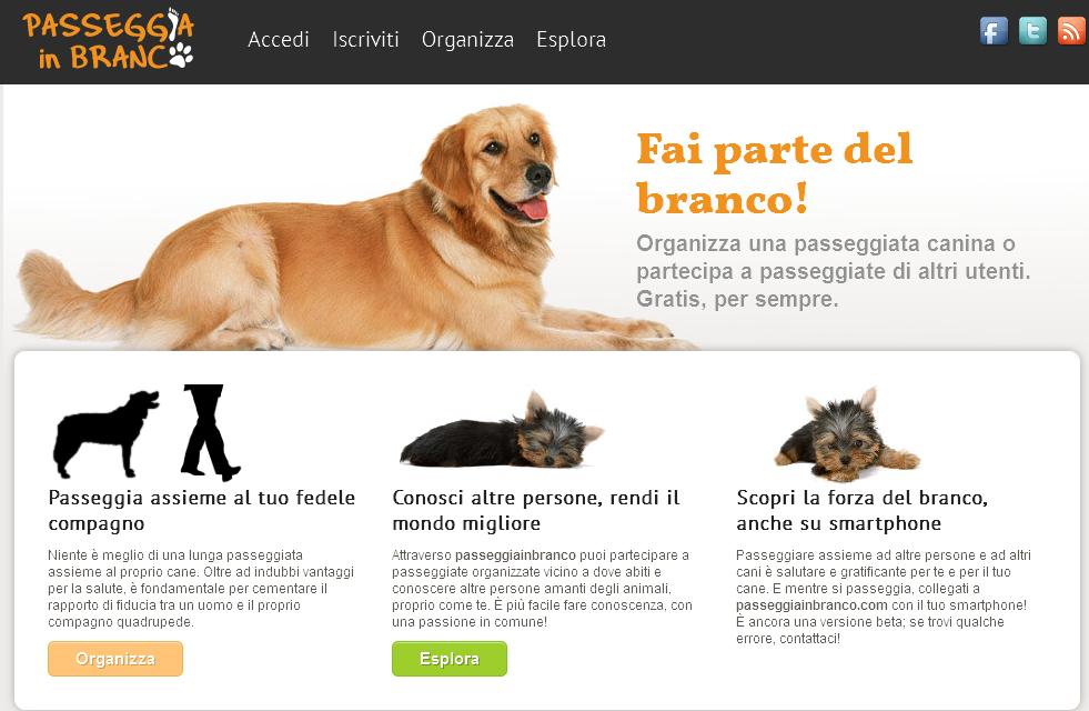 Passeggia in branco_Organizza passeggiate canine_20130730-151333